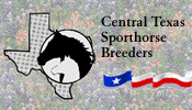 Central Texas Sporthorse Breeders